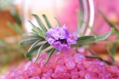 lavender άλας Στοκ Φωτογραφία