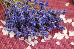 lavender άλας Στοκ φωτογραφία με δικαίωμα ελεύθερης χρήσης
