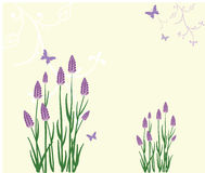 lavender ανασκόπησης διανυσματική απεικόνιση