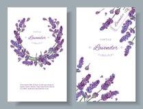 Lavender ανθίζει τα εμβλήματα Στοκ φωτογραφία με δικαίωμα ελεύθερης χρήσης
