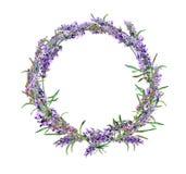Lavender ανθίζει το στεφάνι watercolor Στοκ φωτογραφία με δικαίωμα ελεύθερης χρήσης