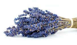 Lavender ανθοδέσμη   Στοκ φωτογραφία με δικαίωμα ελεύθερης χρήσης