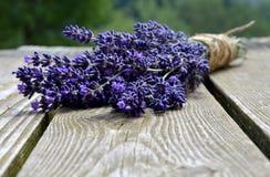 Lavender ανθοδέσμη Στοκ Φωτογραφία