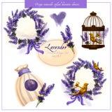 Lavender απεικόνιση ύφους της Προβηγκίας Στοκ Εικόνα