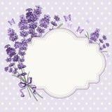 Lavender κάρτα Στοκ εικόνα με δικαίωμα ελεύθερης χρήσης
