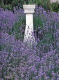 Lavender και ηλιακό ρολόι στοκ εικόνα με δικαίωμα ελεύθερης χρήσης