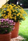 Lavender και λουλούδια cheramic flowerpot Στοκ φωτογραφίες με δικαίωμα ελεύθερης χρήσης