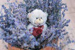 Lavender και το παιχνίδι αντέχουν στο καλάθι Στοκ εικόνες με δικαίωμα ελεύθερης χρήσης