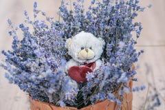 Lavender και το παιχνίδι αντέχουν στο καλάθι Στοκ φωτογραφία με δικαίωμα ελεύθερης χρήσης