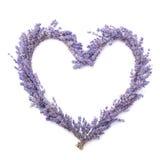 lavender καρδιών Στοκ Φωτογραφίες