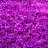 Lavender κρύσταλλα αλάτων λουτρών αρώματος Στοκ Φωτογραφίες