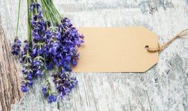 Lavender με την ετικέττα Στοκ Φωτογραφίες