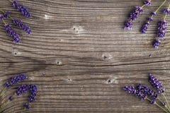 Lavender λουλούδια σε ένα ξύλινο υπόβαθρο σύνορα floral Στοκ Εικόνες
