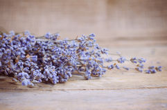 Lavender λουλούδι στον ξύλινο πίνακα Στοκ Εικόνες