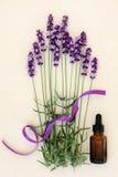 Lavender λουλούδι Aromatherapy Στοκ Φωτογραφία