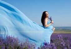 lavender πεδίων γυναίκα Στοκ Εικόνες