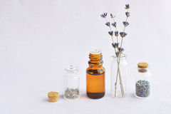 Lavender πετρέλαιο λουλουδιών Στοκ Εικόνες