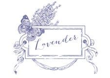 Lavender πλαίσιο και πεταλούδα Απεικόνιση αποθεμάτων