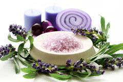 lavender προσοχής σωμάτων Στοκ Εικόνα