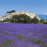 lavender πόλη στοκ φωτογραφίες
