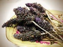 Lavender στο πιάτο σαπουνιών στοκ εικόνα με δικαίωμα ελεύθερης χρήσης