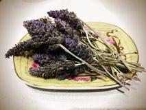 Lavender στο πιάτο σαπουνιών στοκ φωτογραφία με δικαίωμα ελεύθερης χρήσης