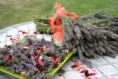 lavender συγκομιδών Στοκ Φωτογραφίες
