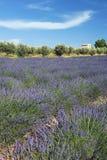 lavender σύννεφων στοκ φωτογραφία με δικαίωμα ελεύθερης χρήσης