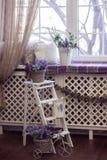Lavender τα λουλούδια στα άσπρα δοχεία και τα ψάθινα καλάθια στέκονται στα σκαλοπάτια και στο windowsill στοκ φωτογραφίες