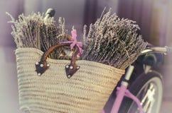 Lavender, Τοσκάνη, Γαλλία Στοκ φωτογραφίες με δικαίωμα ελεύθερης χρήσης