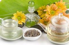 Lavender τσάι λουλουδιών (angustifolia Lavandula (Ηνωμένο Βασίλειο) Στοκ εικόνες με δικαίωμα ελεύθερης χρήσης