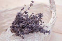 Lavender υπόβαθρο Στοκ φωτογραφίες με δικαίωμα ελεύθερης χρήσης