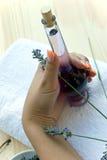 lavender χορταριών ιατρικές γυναίκες στοκ φωτογραφίες με δικαίωμα ελεύθερης χρήσης