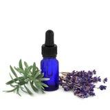 lavender χορταριών ουσίας Στοκ Φωτογραφίες