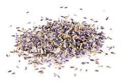 Free Lavender. Stock Photo - 10990940
