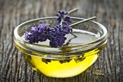 lavender Στοκ φωτογραφίες με δικαίωμα ελεύθερης χρήσης