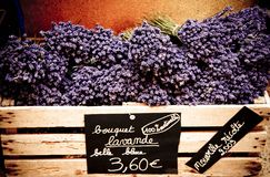 Lavender. In box for sale Royalty Free Stock Photography