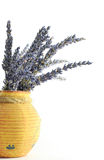 Lavender. A clay pot with lilac lavender Royalty Free Stock Photography