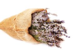 Lavender. Bouquets of lavender placed in a canvas bag Stock Images