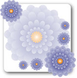 Lavender λουλούδια στο λευκό Στοκ φωτογραφίες με δικαίωμα ελεύθερης χρήσης