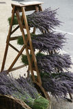 Lavender. Lavander for sale in the provence royalty free stock image