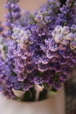 Lavender. A bunch of lavender in white vase Stock Photography