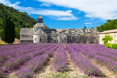 Lavender Abbey Royalty Free Stock Photo