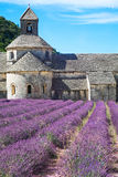 Lavender Abbey Stock Photography