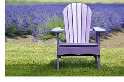 Lavender Adirondack Chair In Front of Lavender Field Stock Photo