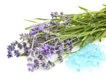 Lavender And Sea Salt Stock Photos