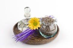 Lavender (angustifolia Lavandula (Ηνωμένο Βασίλειο). Στοκ Φωτογραφία