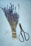 Lavender and Antique Scissors Stock Images