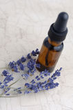 Lavender Aromatherapy. Lavender essential oil Royalty Free Stock Images