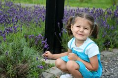 Lavender Baby Girl Royalty Free Stock Image